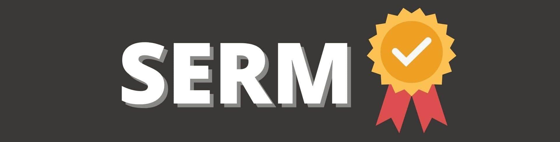 SERM управление репутацией онлайн Web-bees